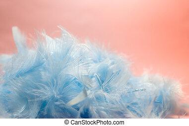 bleu, pastel, style, coloré, sélectif, espace, plumes, foyer, arrière-plan rose, turquoise, barbouillage, poulet, copie, doux