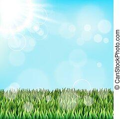 bleu, pelouse, nature, printemps, sky., lumière soleil, vert, floral, herbe
