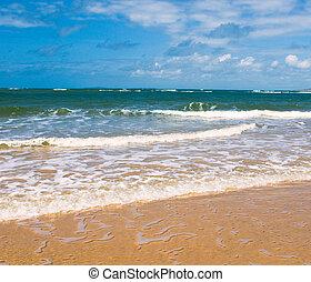 bleu, plage, ciel, mer, profond