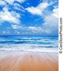 bleu, plage.