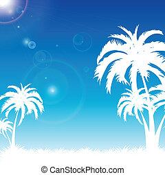 bleu, plage paume, présentation