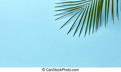 bleu, plat, feuille, space., ideas., paume, poser, fond, vert, copie, ton, disposition