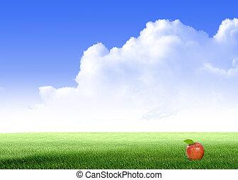 bleu, pomme, champ ciel, blanc vert, nuage