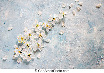 bleu, pommier, fond, fleurs blanches