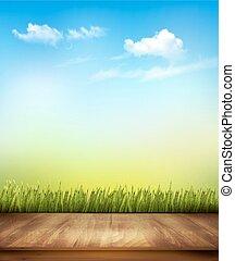 bleu, pont, bois, ciel, arrière-plan., vecteur, vert, devant, herbe
