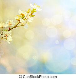 bleu, printemps, contre, bokeh, fond, fleurs
