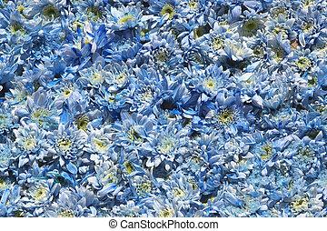 bleu, quater, fleurs