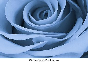 bleu, rose, haut fin
