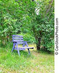 bleu, rustique, chaise, jardin