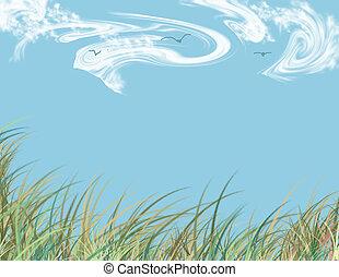 bleu, seagrass, cieux, été