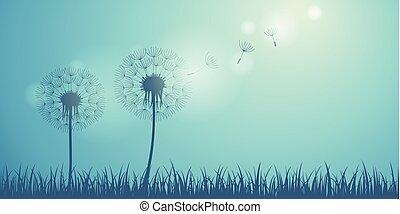 bleu, silhouette, pissenlit, voler, graines, fond