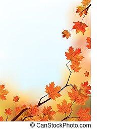 bleu, sky., feuilles, arbre, contre, érable