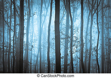 bleu sombre, spooky, forrest, à, arbres, dans, brouillard