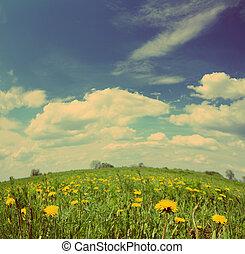 bleu, style, pissenlit, vendange, -, ciel, retro, sous, fleurs