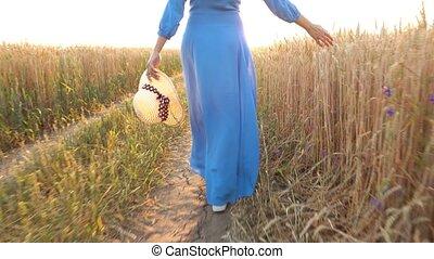 bleu, touchers, femme, blé, elle, lumière, main, champ, coucher soleil, promenades, robe, travers, oreilles