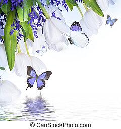 bleu, tulipes, arrière-plan., floral, blanc, herbe, butterfly.