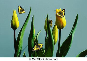 bleu, tulipes, papillons, fond, jaune