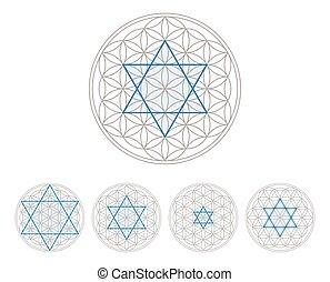 bleu, vie, fleur, hexagram