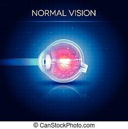 bleu, vision., oeil, normal, clair, fond