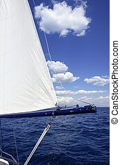 bleu, voile, voilier, océan, mer, vendange