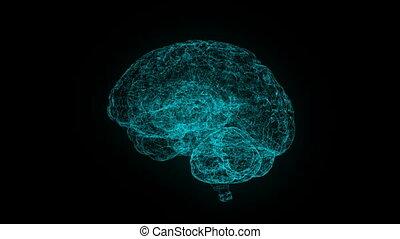 bleu, xray, style, humain, render, science, image, rotating., mouvement, cerveau, fond, technologie, résumé, futuriste, 3d