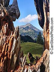 Holzfenster - Blick auf einen Berg durch ein nat?rliches...