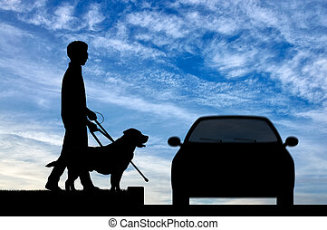 Blind disabled person with cane and dog guide cross road day...