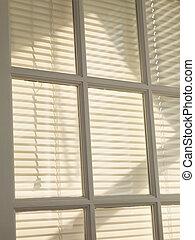blinds.