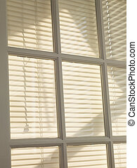 Blinds. - Blinds behind paned window.