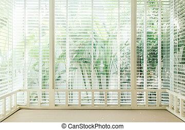 Blinds window