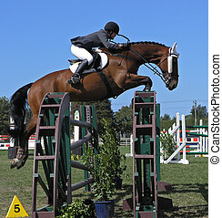 Blinkered - A horse clearing a jump. Taken at the Horse of...
