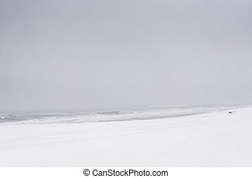 Blizzard on a beach of the Pacific ocean