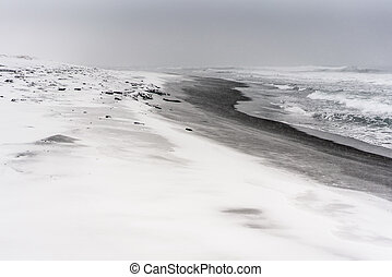 Blizzard on a beach of the Pacific ocean with black sand