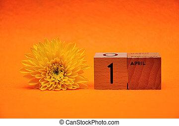 blocs, bois, jaune, 1, avril, fond, pâquerette, orange