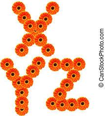 bloem, alfabet
