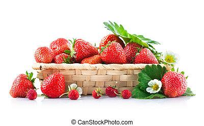 bloem, blad, aardbei, groene, mand, fris