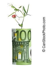 bloem, groeiende, van, eurobiljet