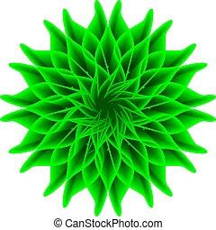 bloem, groene