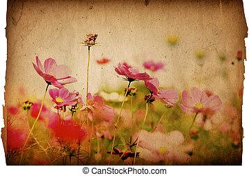 bloem, ouderwets, artistiek