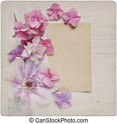 bloem, ouderwetse , achtergrond
