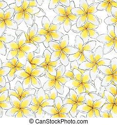 bloem, pattern., seamless, watercolor, plumeria, floral