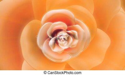 bloem, perzik