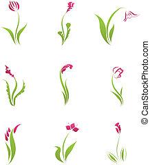 bloem, set, iconen