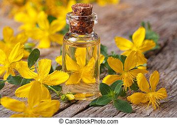bloem, straat., glas, remedie, wort, fles, john's