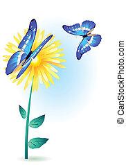 bloem, vlinder, blauwe
