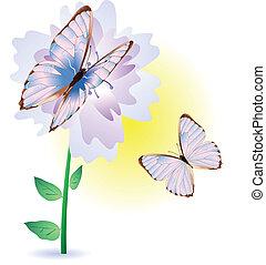 bloem, vlinder