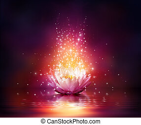 bloem, water, magisch