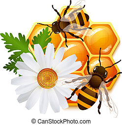 bloemen, embleem, honingraat, bij
