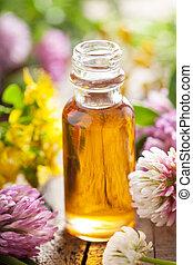 bloemen, essentieel, keukenkruiden, medisch, olie