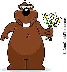 bloemen, gopher